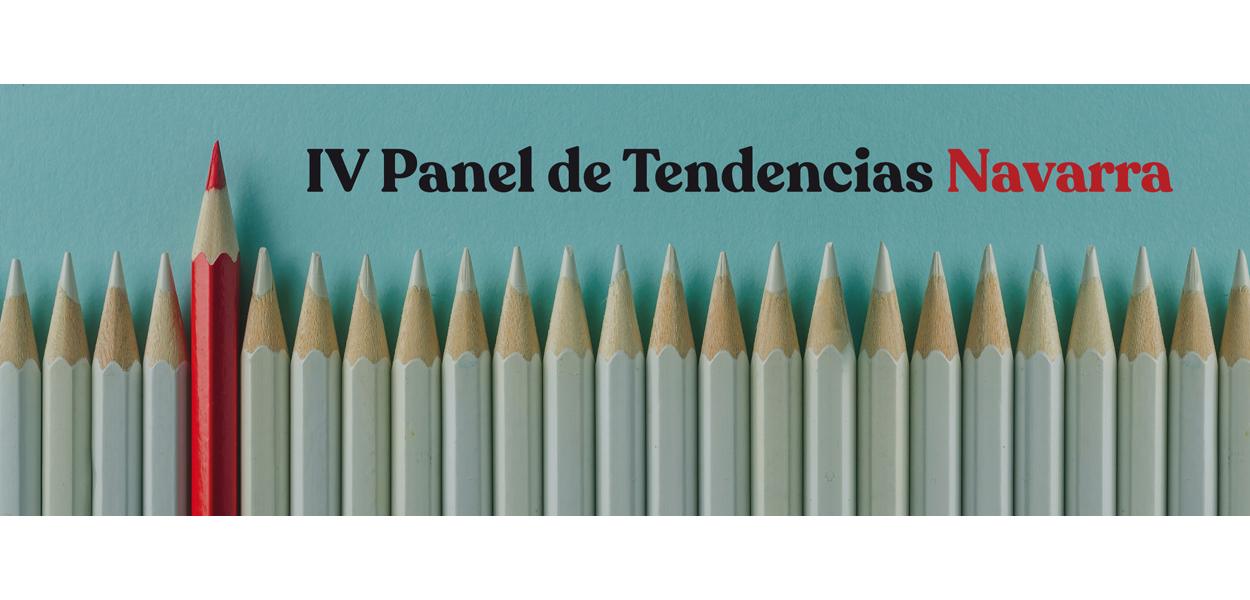 IV Panel Navarra
